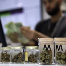 Nevada Is Under Pressure to Reveal How It Awards Its Marijuana Licenses